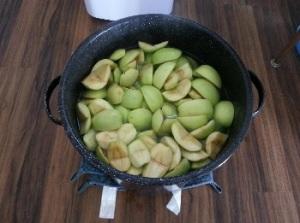 canner making apple juice